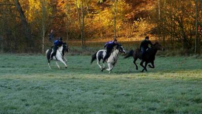 Foto zur Meldung: Auf meinem Pferd trug ich den Sieg davon!