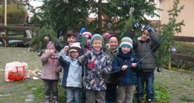 Foto zu Meldung: KiTa Salto VItale: Das ist unser Baum