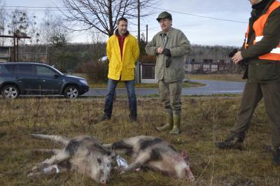 Foto zu Meldung: Schweinerei