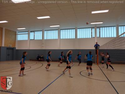 Foto zur Meldung: + + + Volleyball: 8. Spieltag Landesklasse West Frauen + + +