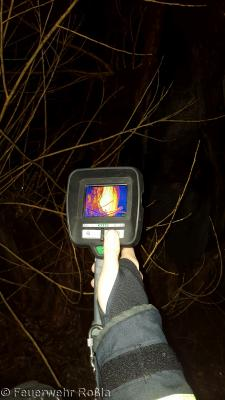 Foto zur Meldung: Brandbekämpfung - Baumbrand