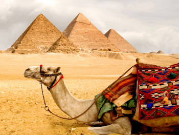 Foto zur Meldung: Was wir schon immer über Ägypten wissen wollten…