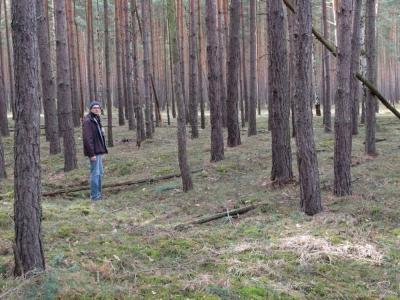 copyright: Naturpark Dahme-Heideseen
