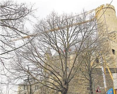 Foto zur Meldung: Ortsgemeinde: Winterbaupause in Burg Schwalbach beendet