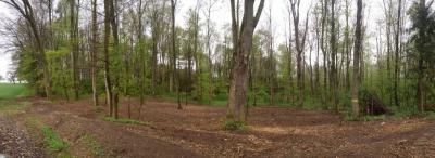 Waldlichtung eröffnet