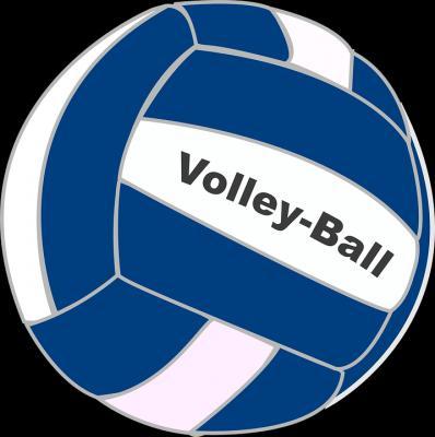 Foto zur Meldung: Landesfinale der WK IV im Volleyball