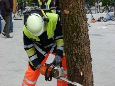 Ein Kamerad zeigt den Besuchern, wie man einen Baum im Einsatz mit der Motorsäge fällt.