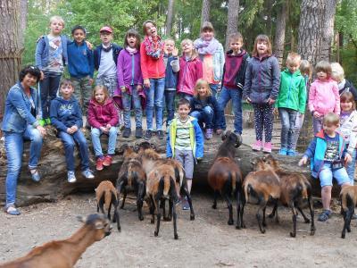 Foto zur Meldung: Erlebnisreicher Wandertag im Tierpark Perleberg