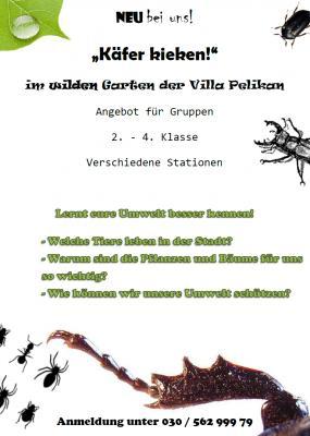 """Foto zur Meldung: """"Käfer kieken!"""""""