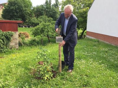 Vorschaubild zur Meldung: Kaltohmfelder schenken dem Bürgermeister zum Abschied einen Baum