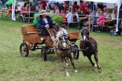 Vorschaubild zur Meldung: 20. Reiterfest des Reit- und Fahrvereins Korbußen e.V. 2016