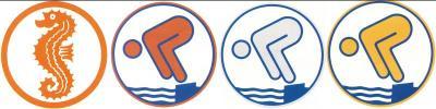 Vorschaubild zur Meldung: Die Sommertage nutzen - Schwimmabzeichen machen!
