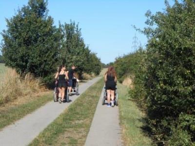 Foto zu Meldung: Sonniger Spaziergang