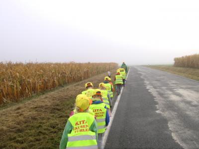 Vorschaubild zur Meldung: Die Tausend-Fühler auf Wanderschaft!