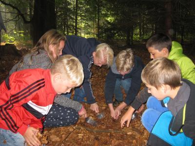 Foto zur Meldung: Waldprojekttag im Hopelser Wald