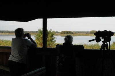 Foto zu Meldung: Natur-Erleben vom NABU-Vogelbeobachtungsturm am Strengsee bei Netzen - ein Genuss für Naturfreunde!