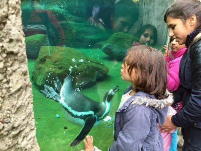 Foto zu Meldung: Besuch im Dresdner Zoo