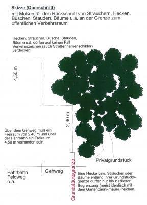 So müssen Bäume und Sträucher geschnitten werden, damit der öffentliche Verkehrsraum nicht beeinträchtigt wird.