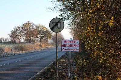 Foto zur Meldung: Vogelgrippe: Schmalensee in Beobachtungszone