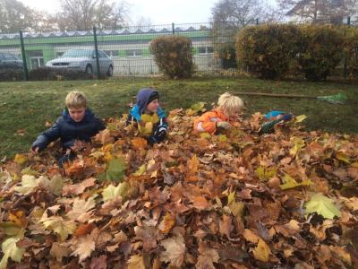 Foto zur Meldung: Herbstarbeitseinsatz
