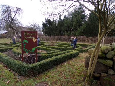 Foto zur Meldung: Weihnachts-/Winterprojekt der 4. Klassen im Forsthof Dümmer
