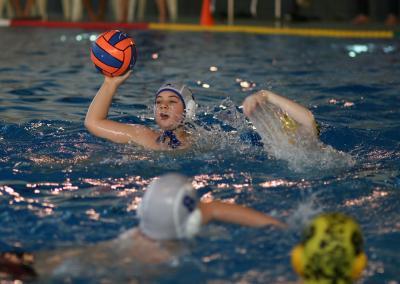 Foto zu Meldung: Wasserball U13 Landesliga Sachsen