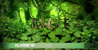 Vorschaubild zur Meldung: Der Dschungel ist wieder da - Klasse 4b - Dezember 2016