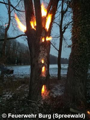 Vorschaubild zur Meldung: Einsatz Nr. 14/2017 - Brennende Erle