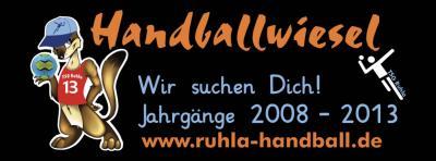 Foto zu Meldung: Handballwiesel suchen Nachwuchs