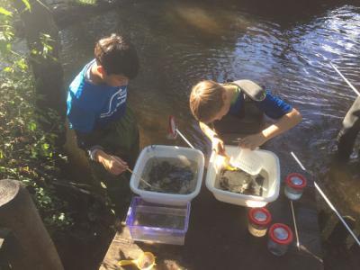"""Foto zur Meldung: Wassercamp für """"Könner"""" im Wildpark Eekholt"""