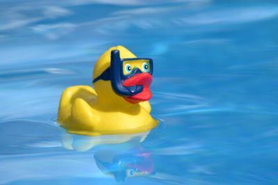 Vorschaubild zur Meldung: Ausbildung Trainerassistent Schwimmen