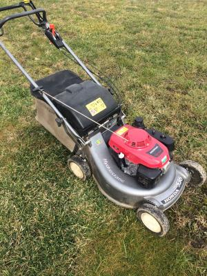 Vorschaubild zur Meldung: Wann darf ich eigentlich meinen Rasen mähen?