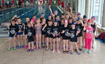Foto zu Meldung: Schwimmen Kreismeisterschaften Jg.08-11 in Zittau