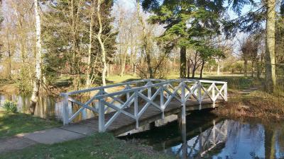 Foto zu Meldung: Der Hochdorfer Garten im Frühling