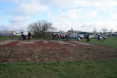 Foto zu Meldung: Rosen der Neu-Wittstocker werden geborgen: Eltern sind eingeladen