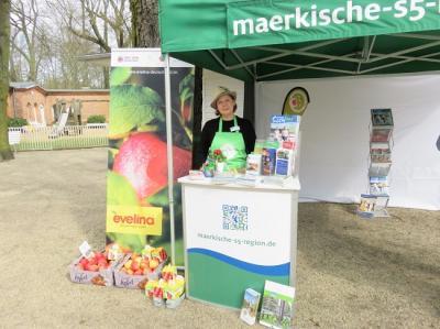 Vorschaubild zur Meldung: Saisonauftakt auf der Rennbahn Hoppegarten