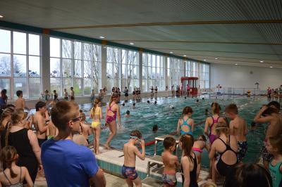 Vorschaubild zur Meldung: 20. Kinder- und Jugendsportspiele des Landkreises OSL im Schwimmen am 04.04.2017 in Lübbenau