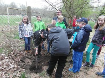 Vorschaubild zur Meldung: Die Schüler der Klasse 4a pflanzten einen Baum