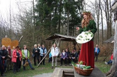 Vorschaubild zur Meldung: Ein Besuch bei Doktor Wald am Ihlefeld im Nationalpark Hainich