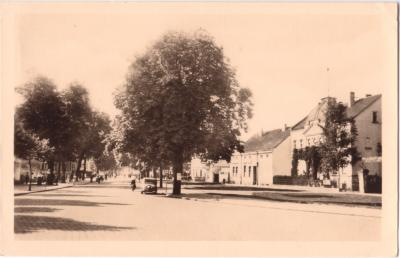 Eisenbahnstraße 1953, Baumallee im Vordergrund