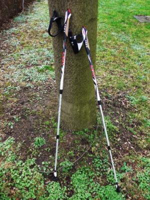 Foto zu Meldung: NORDIC-WALKING-STÖCKE gesucht