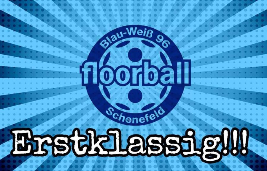 spielvereinigung blau-weiß 96 schenefeld e.v. - heimmacht, meister, Hause ideen
