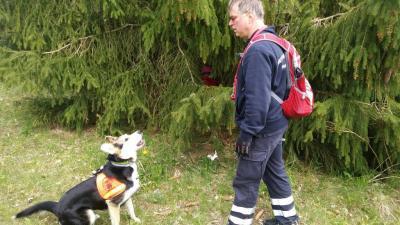 Vorschaubild zur Meldung: Internationaler Tag des Rettungshundes