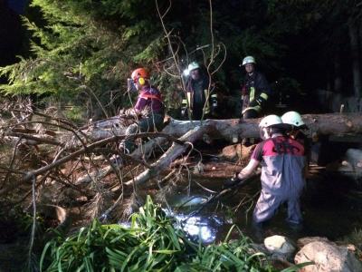 Vorschaubild zur Meldung: Missglückte Baumfällarbeiten in Pouch ...