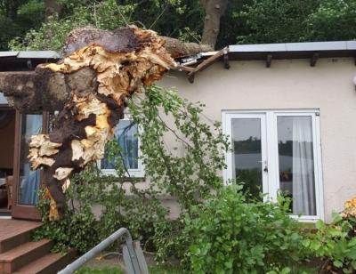 Foto zur Meldung: Wehr im Kampf mit dem Windbruch – Unwetter trifft Schmalensee