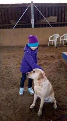 Foto zu Meldung: Hundeschule bei Frau Leiblein