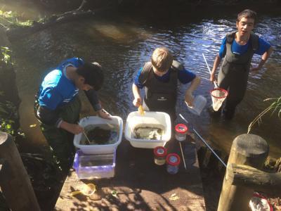 Foto zur Meldung: Das Excellenz-Wassercamp startet - Anmeldungen ab sofort möglich