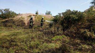 Vorschaubild zur Meldung: Ödlandbrand auf der Halbinsel Pouch