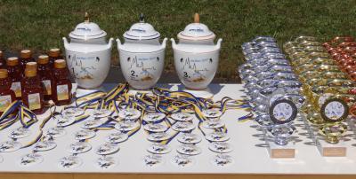 Foto zu Meldung: 10. Meißener Weinberg-Cup