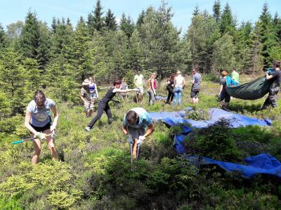 Vorschaubild zur Meldung: Erfolgreiche Aktionstage für die Vielfalt am Grünen Band bei Brennersgrün